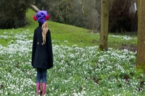 Bereaved families can plant snowdrops in remembrance of loved ones at annual walk